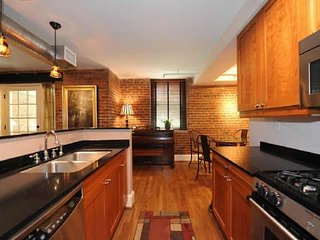 Stunning Apartment - Atlanta vacation rentals