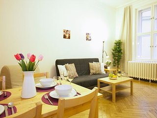 KAPROVA 2BR around the corner from Old Town Square - Prague vacation rentals