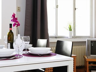 MOLDAU - 2BR apt, 10 min walk from Old Town Square - Prague vacation rentals