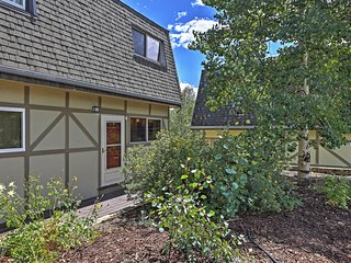 Beautiful 2BR Silverthorne Condo – Close to Keystone, A-Basin, & Breckenridge w/Stunning Mountain Views. WiFi, Washer/Dryer and Cable! Year-Round Fun for Everyone! - Silverthorne vacation rentals
