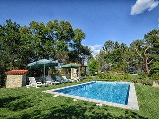 Camélias de Basto -  Casa da Boavista - Celorico de Basto vacation rentals