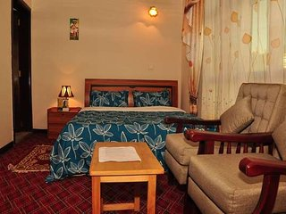 Nice Condo with Internet Access and Satellite Or Cable TV - Addis Ababa vacation rentals