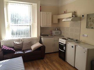 Large Georgian Apartment in Dublin City - Dublin vacation rentals