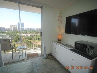 Spectacular Ocean Views/Kitchenette/Free WiFi - Honolulu vacation rentals