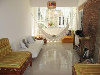 Cozy apartment in Gloria - Rio de Janeiro vacation rentals