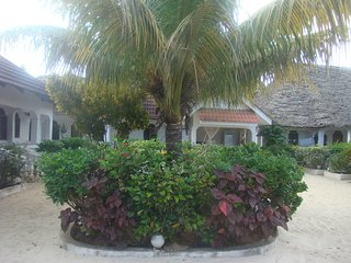 H & H BEACH BUNGALOW KING DOUBLE AIR CON - Nungwi vacation rentals