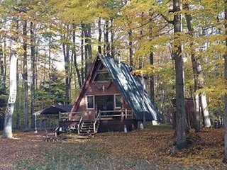 Outdoorsy AFrame Set Back 9 Acres on Hamlin Lake - Ludington vacation rentals