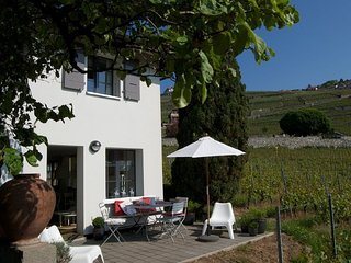 Little house in the vineyards in Rivaz/Chexbres - Chexbres vacation rentals