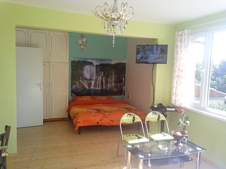 Beautiful 1 bedroom House in Sofia - Sofia vacation rentals
