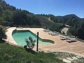 Le Lavandin au milieu de 200 hectares de bois en pleine montagne - Teyssieres vacation rentals