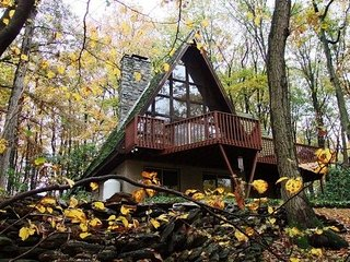 In Quiet Forest - One Level in A-frame House - Quarryville vacation rentals