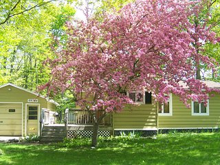 Charming Cottage with Internet Access and A/C - Charlevoix vacation rentals