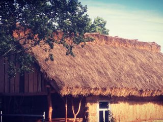 Unique and cosy timber cottage in a quiet village - Nurzec Stacja vacation rentals