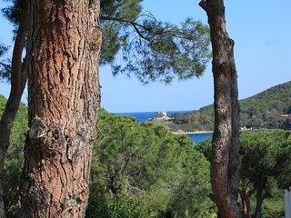 Villetta/chalet - Procchio vacation rentals