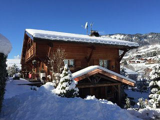 Nice Chalet with Internet Access and Central Heating - Praz Sur Arly vacation rentals