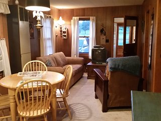Riverwood Cottage--Eagle River Chain & Golf Course - Eagle River vacation rentals