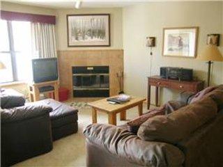 Convenient Breckenridge 1 Bedroom Ski-in - RW305 - Image 1 - World - rentals