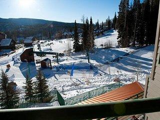 Affordable Ski in/Out Condo - Corner Unit - Views - 2 Decks - Durango vacation rentals