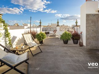 Rodrigo Triana 2 | 1-bedroom, shared terrace - Seville vacation rentals