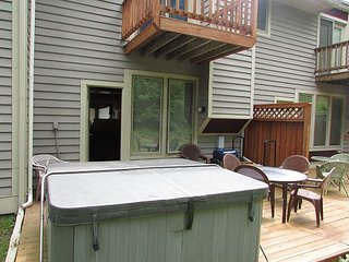 Ski In/Ski Out with Lake Access - McHenry vacation rentals