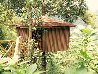 Nice Tree house with Housekeeping Included and Balcony - Ginigathena vacation rentals