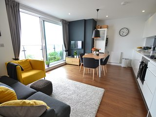 Modern 2 BR River Side Flat (Zone 2) - London vacation rentals