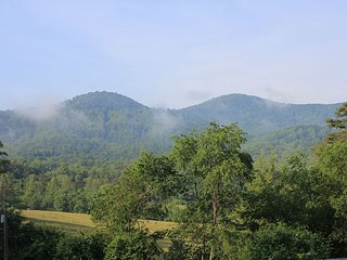 Stunning Mountain View Cottage w/ Hot Tub - Asheville vacation rentals