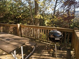 Deep Creek Fishing Retreat - Minutes from Fishing, Hiking, and Waterfalls - Adorable Getaway - Bryson City vacation rentals