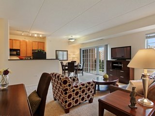 Spacious and Bright 1 Bedroom Apartment in Chicago - Vernon Hills vacation rentals