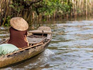 Vietnam family tour - New Delhi vacation rentals