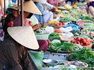Voyage familial au Vietnam - New Delhi vacation rentals