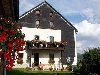 Dachgeschosswohnung für 2-4 Personen im Erzgebirge - Kurort Oberwiesenthal vacation rentals