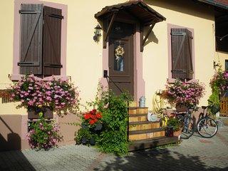 Gîte Le Magnolia sur la route du vin - Châtenois vacation rentals