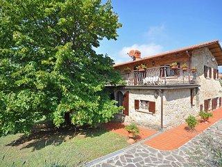 Ponte Buriano-cincelli - 1909001 - Castiglion Fibocchi vacation rentals