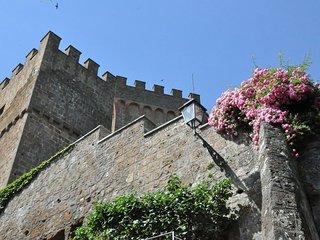Comfortable 1 bedroom Castle in Proceno - Proceno vacation rentals