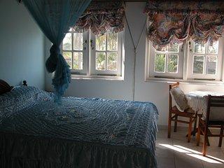 Aqua Marine room- Samyama - Negombo vacation rentals