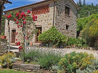 Charming 6 bedroom Villa in Lippiano - Lippiano vacation rentals
