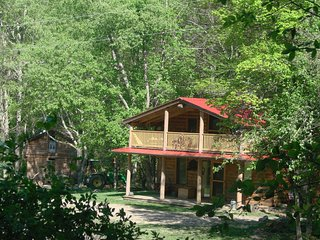 Rock-n-Creek Cabin mile post 27 off BR Pkwy - Montebello vacation rentals