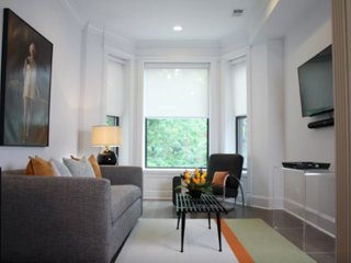 Furnished 1-Bedroom Apartment at N Orchard St & W Briar Pl Chicago - Chicago vacation rentals