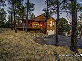 Pine Cone Cabin 717 - Alto vacation rentals