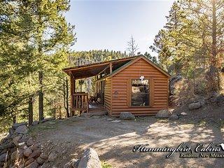 Hideout Cabin 751 - Alto vacation rentals