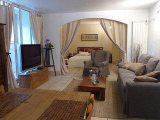 2 rooms apartment with garden - Nice vacation rentals