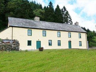 Ffermdy Llanwrtyd Farmhouse - 414291 - Llanwrtyd Wells vacation rentals