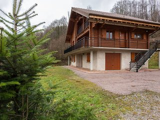 Nice Chalet with Internet Access and Wireless Internet - La Bresse vacation rentals