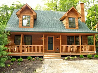Cozy Rustic Luxury Cabin w/ POOL & Fireplace - Saugatuck vacation rentals