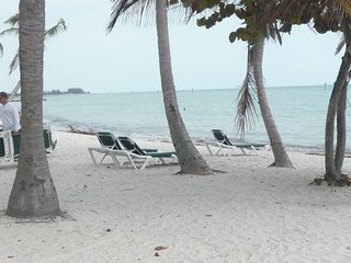 Nature's Boutique - Key West vacation rentals