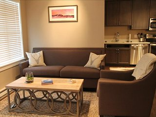 Beautifully renovated 2 BR at the Timbers!  Hot tub! - Crested Butte vacation rentals