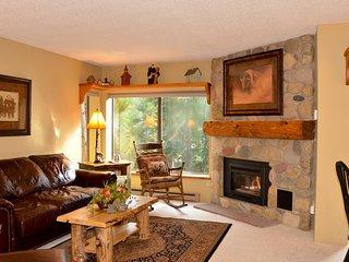 Cozy Condo with Internet Access and Garage - Breckenridge vacation rentals