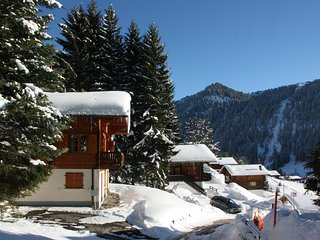 Perfect Villa with Balcony and Microwave - Morgins vacation rentals