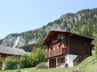 Perfect 4 bedroom Villa in Chatel - Chatel vacation rentals